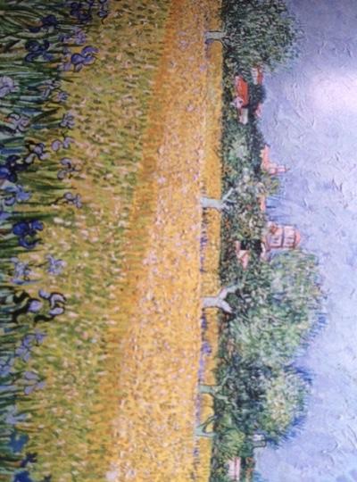 musée van gogh, vue sur Arles