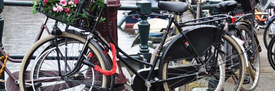 fietsenmetbloemencap-1024x576
