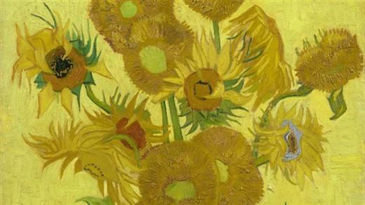 visiter le musée Van Gogh